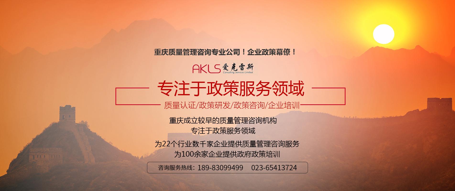 重庆市长质量奖咨询